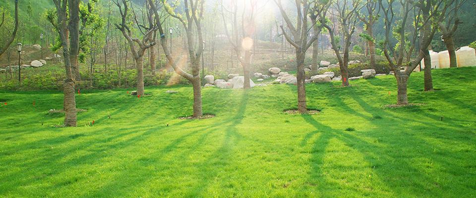 景区信息:太阳山国家森林公园地址:江苏省苏州市虎丘区阳山环路8号.